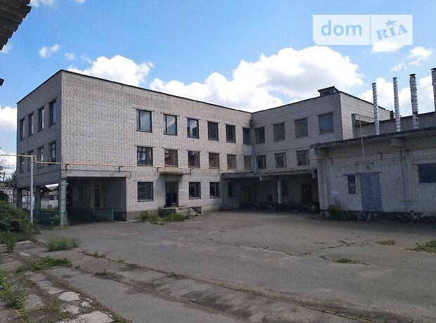 Складское помещение в Корсуне-Шевченковском, цена продажи: договорная за объект фото 1