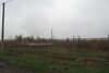 Земля под жилую застройку в Борисполе, район Борисполь, площадь 10 соток фото 7