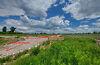 Земля под жилую застройку в Борисполе, район Борисполь, площадь 8 соток фото 5