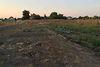 Земля под жилую застройку в селе Иванков, площадь 41 сотка фото 5