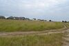 Земля под жилую застройку в селе Мартусовка, площадь 7 соток фото 7