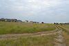 Земля под жилую застройку в селе Мартусовка, площадь 7 соток фото 8