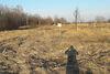 Земля под жилую застройку в Борисполе, район Петровское, площадь 10 соток фото 4