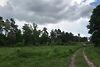 Земля под жилую застройку в селе Счастливое, площадь 60 соток фото 5