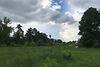 Земля под жилую застройку в селе Счастливое, площадь 60 соток фото 7