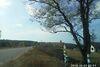 Земля под жилую застройку в селе Здвижовка, площадь 12 соток фото 5