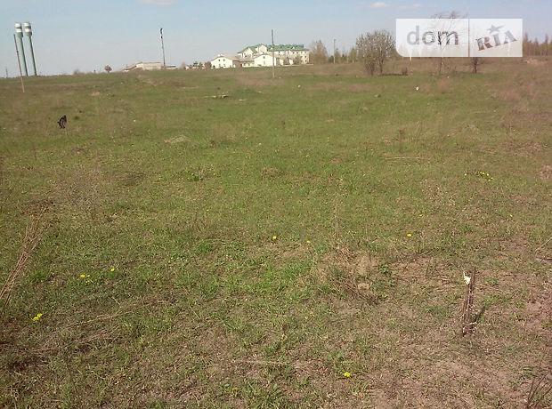 Земля под жилую застройку в Брусилове, район Брусилов, площадь 10 соток фото 1