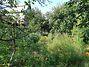 Земля под жилую застройку в Буче, район Буча, площадь 12 соток фото 5