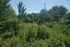 Земля под жилую застройку в Черкассах, район Школьная, площадь 6 соток фото 4