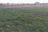 Земля под жилую застройку в селе Геронимовка, площадь 12 соток фото 2