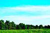 Земля под жилую застройку в селе Редьковка, площадь 12 соток фото 8