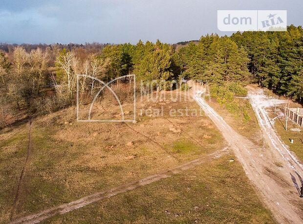 Земля под жилую застройку в селе Сновянка, площадь 40 соток фото 1