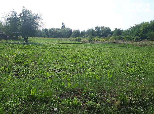 Земля под жилую застройку в селе Великий Кучеров, площадь 45 соток фото 1
