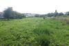Земля под жилую застройку в селе Великий Кучеров, площадь 45 соток фото 2