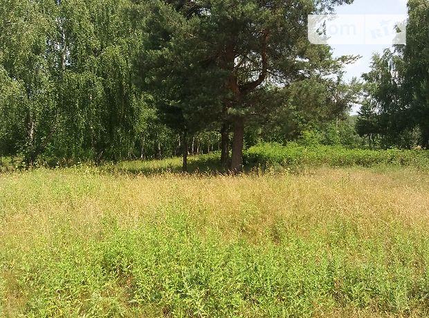 Продажа участка под жилую застройку, Львовская, Червоноград, c.Горник