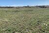 Земля под жилую застройку в селе Новоалександровка, площадь 8 Га фото 3