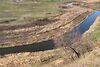 Земля под жилую застройку в селе Новоалександровка, площадь 8 Га фото 4