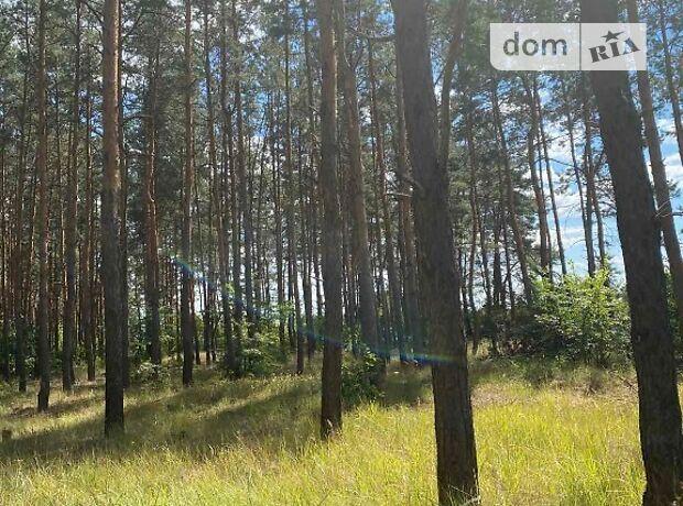 Земля под жилую застройку в селе Песчанка, площадь 13 соток фото 1