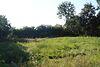Земля под жилую застройку в селе Степашки, площадь 34.3 сотки фото 3