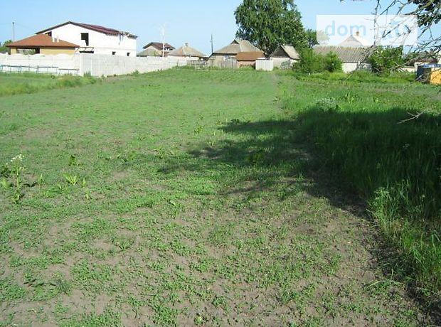 Земля под жилую застройку в селе Черкасские Тишки, площадь 25 соток фото 1