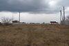 Земля под жилую застройку в селе Русские Тишки, площадь 25 соток фото 5