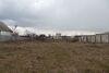 Земля под жилую застройку в селе Русские Тишки, площадь 25 соток фото 7