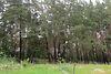Земля под жилую застройку в селе Васищево, площадь 10 соток фото 3