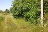 Земля под жилую застройку в Хмельницком, район Книжковцы, площадь 12 соток фото 2