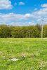 Земля под жилую застройку в Хмельницком, район Выставка, площадь 30 соток фото 8