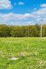 Земля под жилую застройку в Хмельницком, район Выставка, площадь 10 соток фото 7
