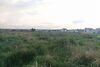 Земля под жилую застройку в Ирпене, район Ирпень, площадь 7 соток фото 4
