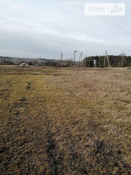 Земля под жилую застройку в Иванкове, район Иванков, площадь 20 соток фото 1