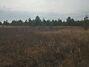 Земля под жилую застройку в Иванкове, район Иванков, площадь 20 соток фото 6
