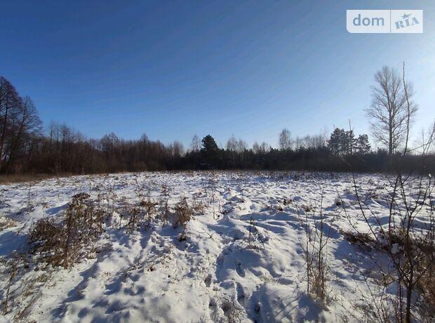 Земля под жилую застройку в селе Термаховка, площадь 80 соток фото 1
