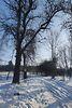 Земля под жилую застройку в селе Термаховка, площадь 80 соток фото 3