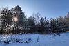 Земля под жилую застройку в селе Термаховка, площадь 80 соток фото 4