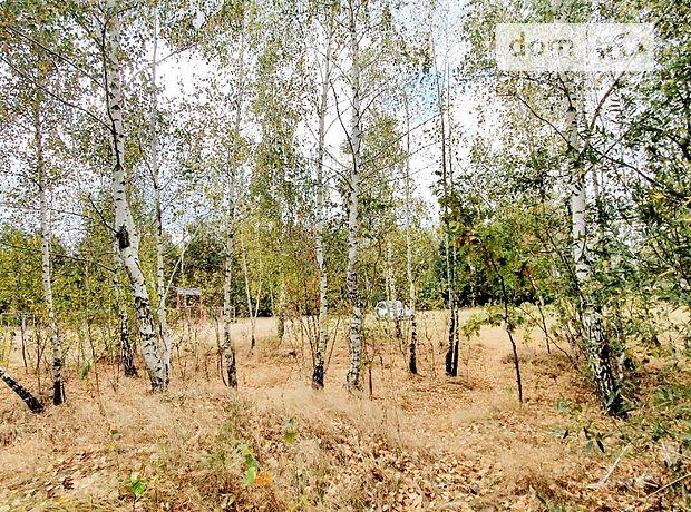 Земля под жилую застройку в селе Глубочица, площадь 24 сотки фото 1
