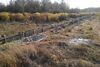 Земля под жилую застройку в Житомире, район Марьяновка, площадь 10 соток фото 2