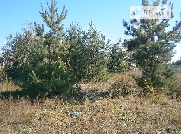 Земля под жилую застройку в селе Пряжево, площадь 25 соток фото 1