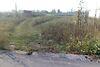 Земля під житлову забудову в селі Сінгури, площа 16 соток фото 1