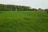 Земля под жилую застройку в селе Сингуры, площадь 15 соток фото 4