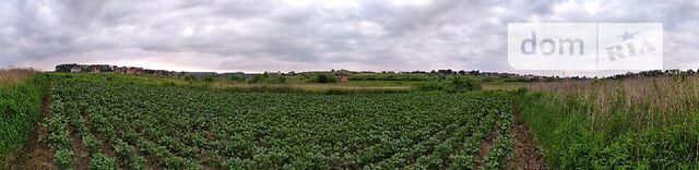 Земля под жилую застройку в селе Малехов, площадь 8 соток фото 1