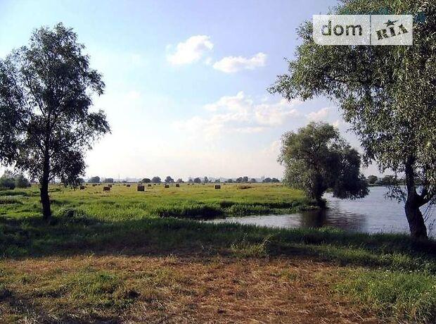 Земля под жилую застройку в селе Бендюговка, площадь 25 соток фото 1