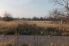 Земля под жилую застройку в селе Гребени, площадь 24.5 сотки фото 6