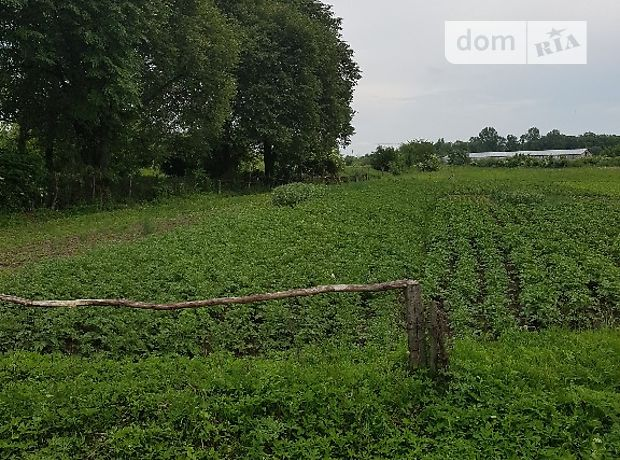 Земля под жилую застройку в селе Жовтанцы, площадь 10 соток фото 1