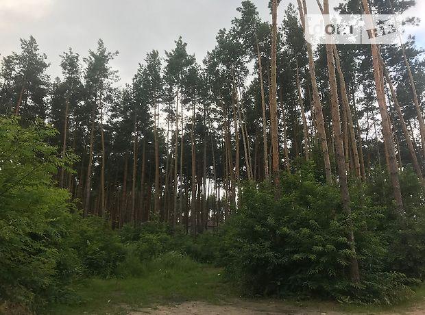 Земля под жилую застройку в селе Бортничи, площадь 30 соток фото 1