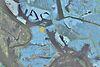 Земля под жилую застройку в Киеве, район Осокорки, площадь 12 соток фото 4