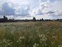 Земля под жилую застройку в селе Михайловка-Рубежовка, площадь 15 соток фото 5