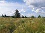 Земля под жилую застройку в селе Михайловка-Рубежовка, площадь 15 соток фото 2