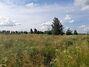 Земля под жилую застройку в селе Михайловка-Рубежовка, площадь 15 соток фото 3